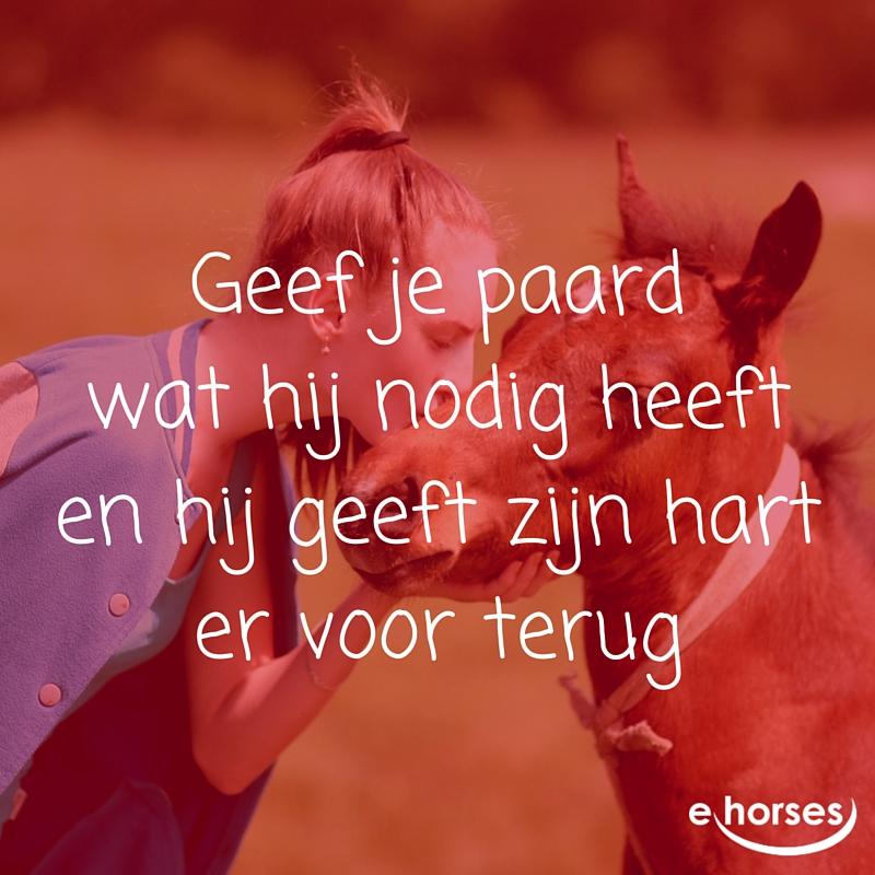 NL hart