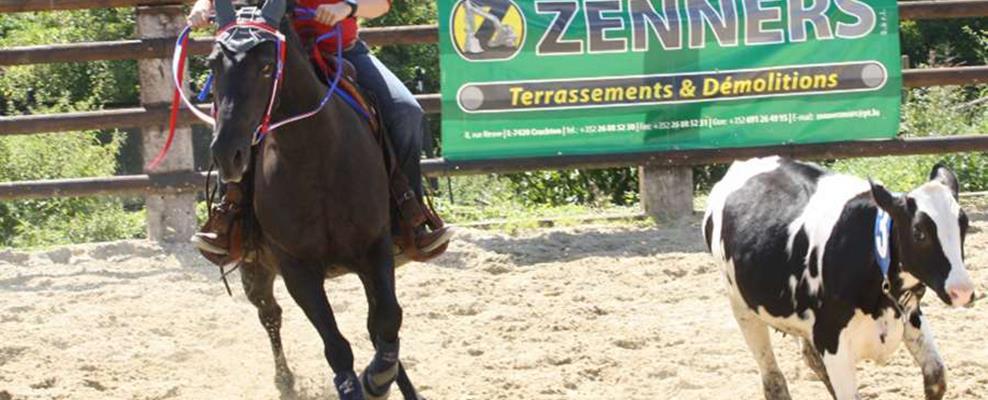 14 redenen waarom een klein meisje op zou moeten groeien met een paard