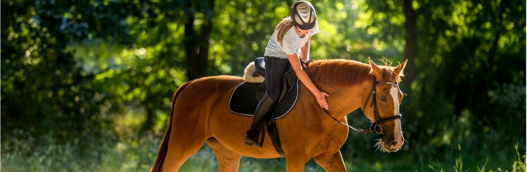 21 indicaties die aangeven of je een paardenmens bent