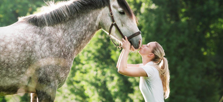 10 Tips voor het kopen van een paard