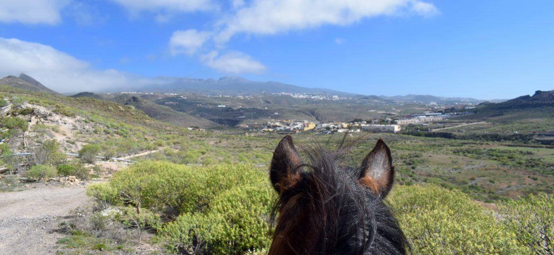Paardrijden op het prachtige eiland Tenerife