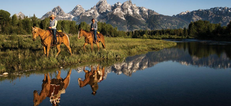 Ik ga op vakantie en neem mee: mijn paard!