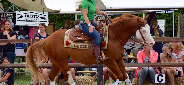 Evenement 'Waardse Horse Fair' zet Zeeland op de kaart!
