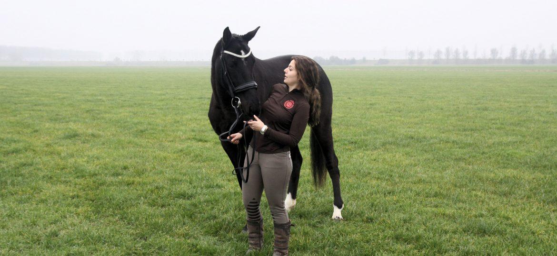 De allerbeste plek voor je paard? Heel simpel. Thuis!
