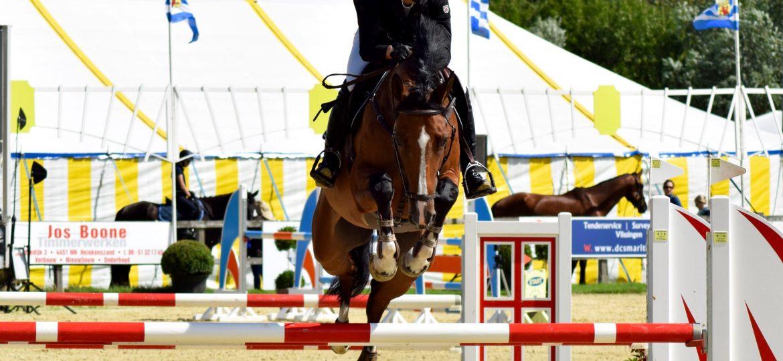 Evenement Jumpin De Weel was wederom een succes!