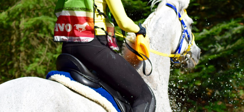 Endurance Hippiade in Ermelo. Wat een spannende wedstrijd!