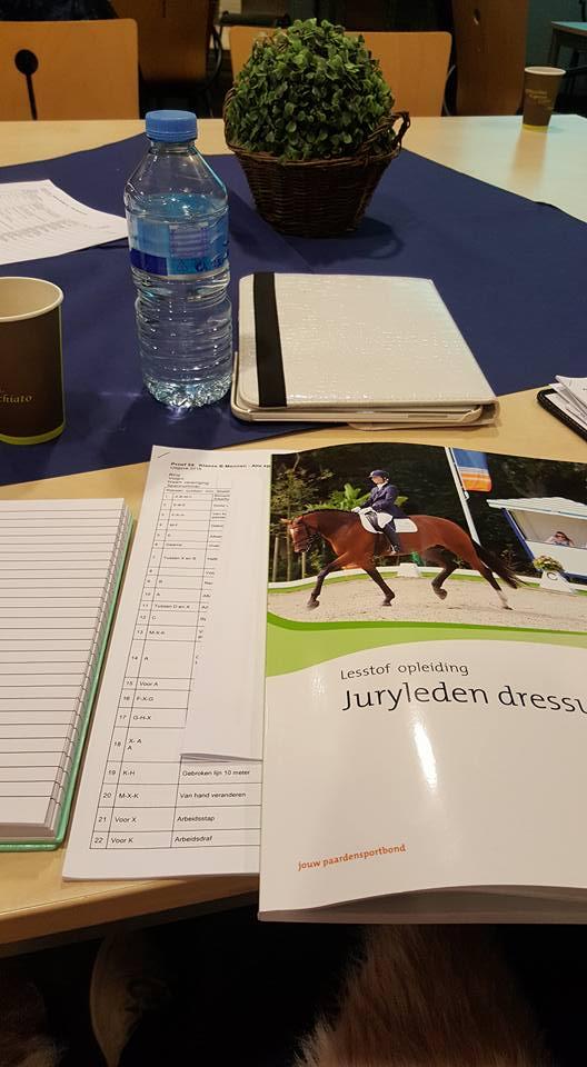 juryleden dressuur