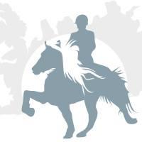 """Ehorses op het evenement Ice Horse Eindhoven, waar paarden """"dansen"""" op het ijs."""