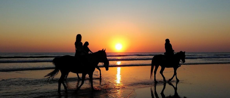Vakantie met het paard: planning en checklist